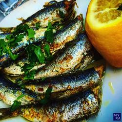 Greek Sardines