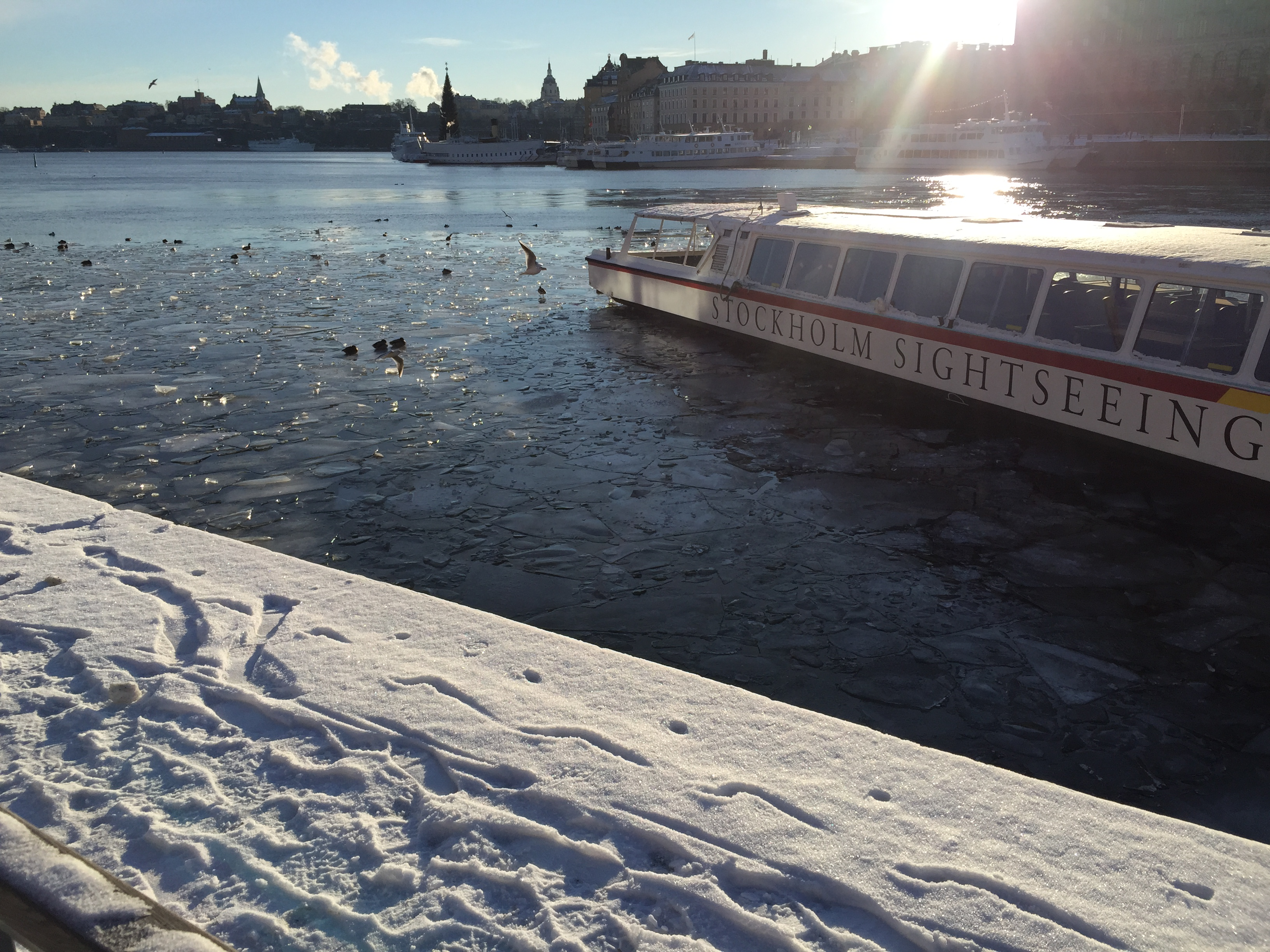 Stockholm winters