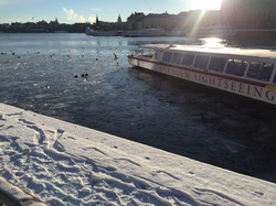 Stockholm winters