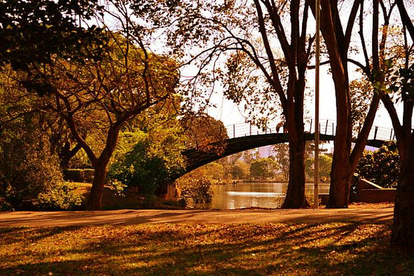 IBIRAPUERA: more than just a park, a place full of attractions
