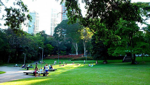 BURLE MARX PARK: SMALL, COZY AND FULL OF GOOD STORIES