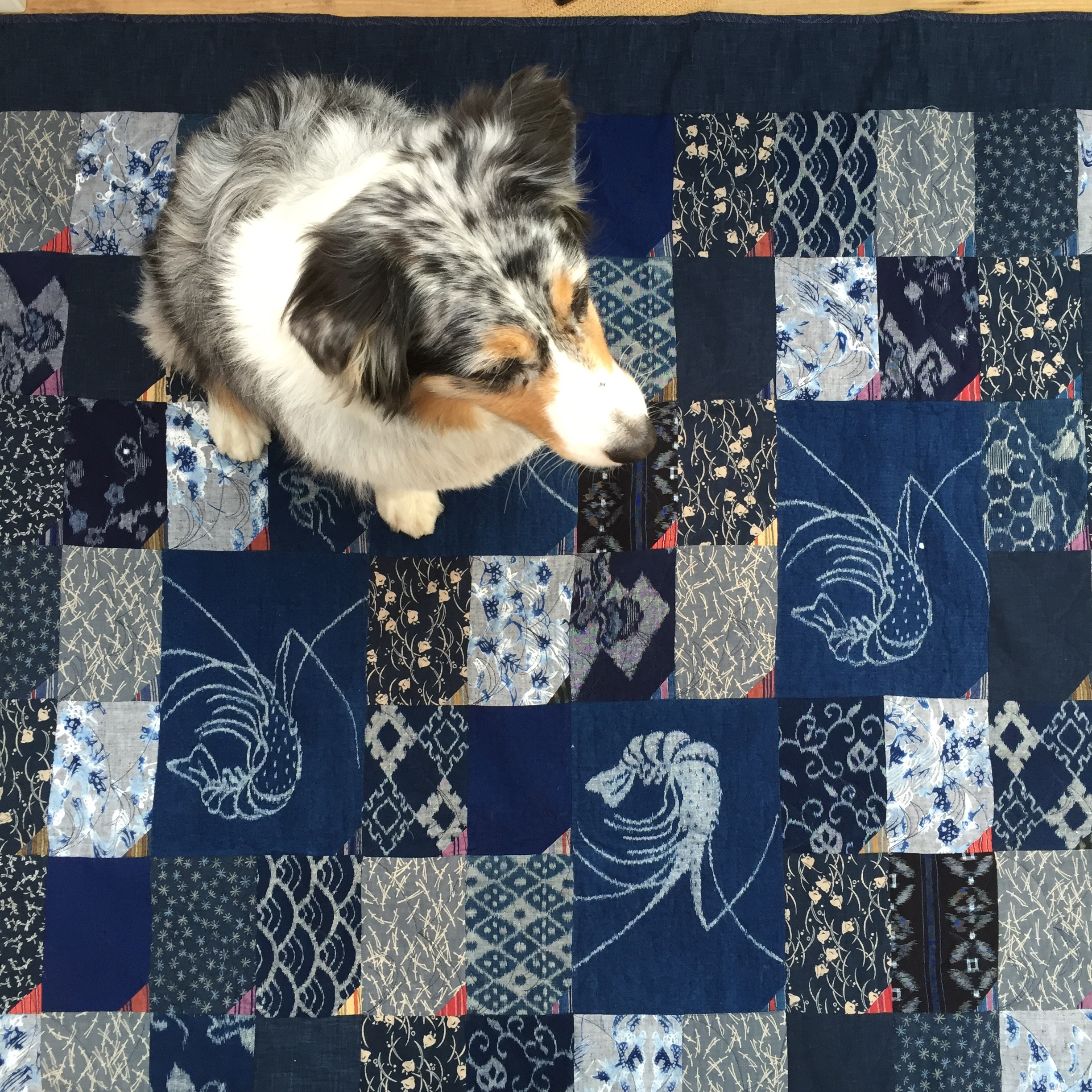 Indigo Dreams Quilt