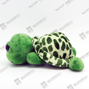 綠蠵龜寶寶