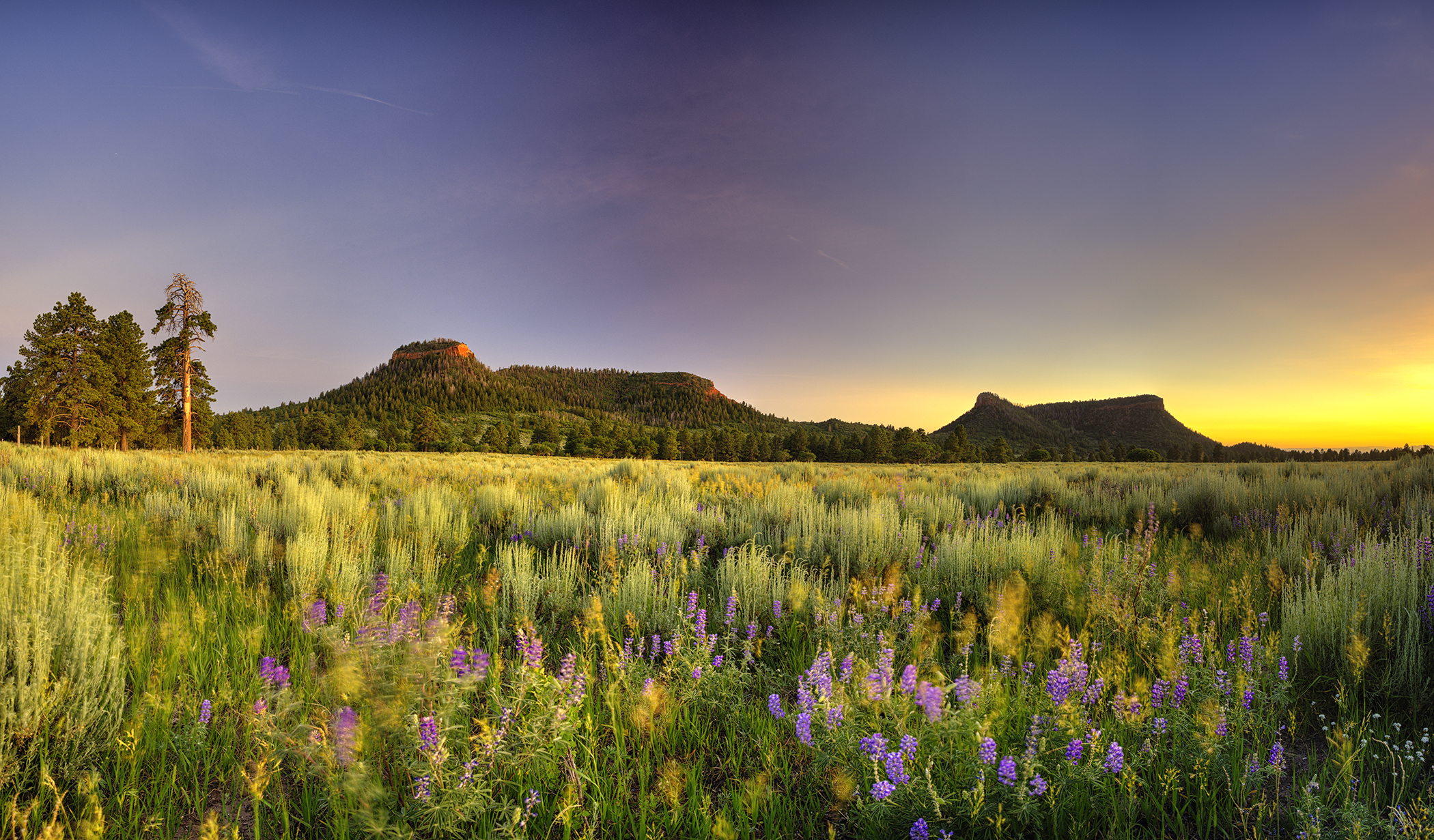 Bears Ears Buttes, Utah