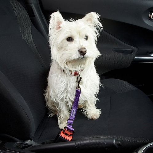 Bunty Car Safety Clip for Dogs/Cats