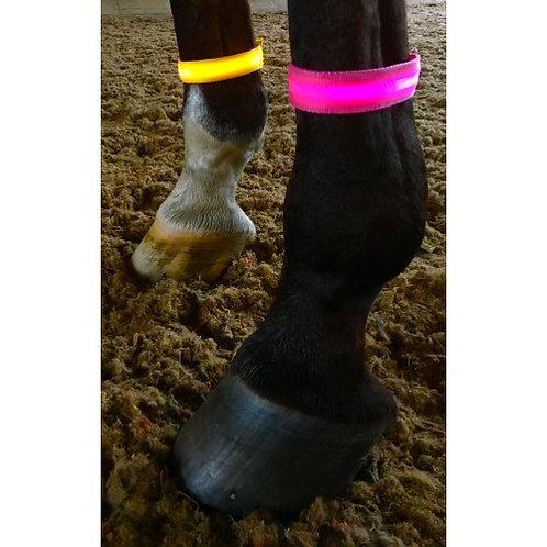 Equisafety Flashing Arm/Leg Band