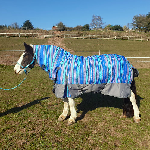 100gm combo turnout rug