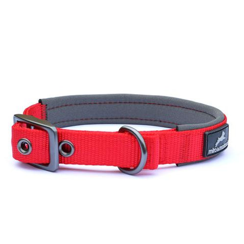Padded Nylon Collar with Buckle