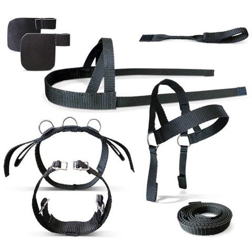 Crafty Ponies Driving Harness set