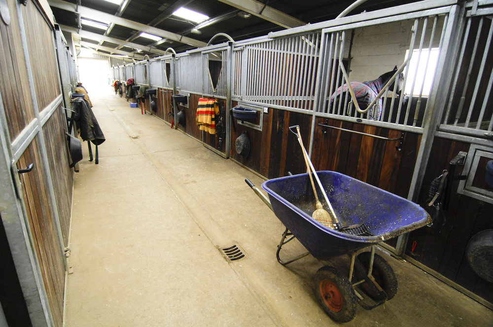 Yard, Stable and Feed Room