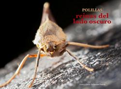 Polillas reinas del lado Oscuro Revista Ecuador Terra Incognita