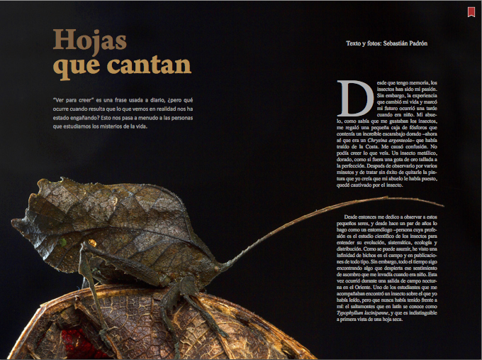 Hojas que Cantan Revista Ecuador Terra Incognita