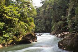 Bombuscaro - Ecuador