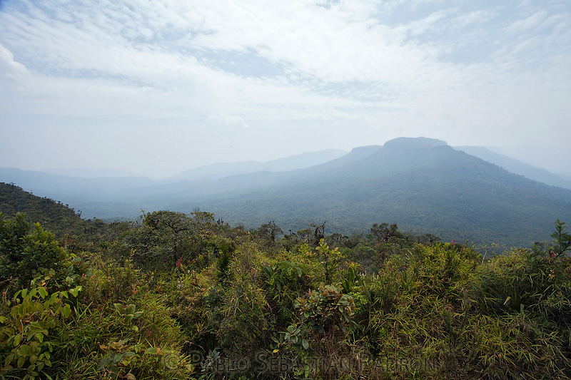 Coordillera del Condor  - Ecuador