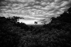 Planicie Amazónica