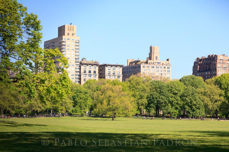 Central Park 2 - USA
