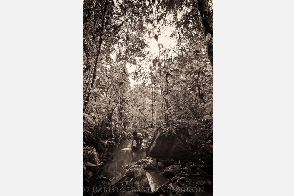 Niño Shuar in la Selva - Ecuador