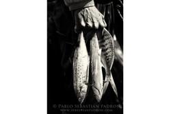 Pescadores 2 - Ecuador