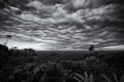 Planicie Amazonica