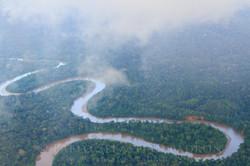 Amazonía - Ecuador