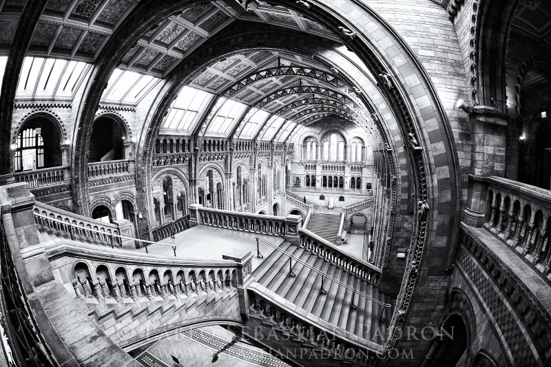 Natural History Museum London - UK