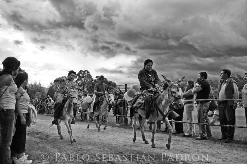 Carrera-de-burros-el-paraiso_20070408_00662.jpg