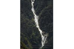 Río Cardenillo - Ecuador