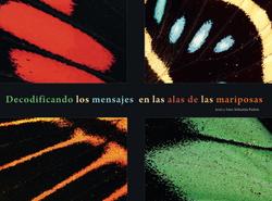 Decodificando los mensajes en las alas de las mariposas Revista Ecuador Terra Incognita