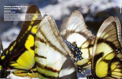 Revista Ecuador Infinito