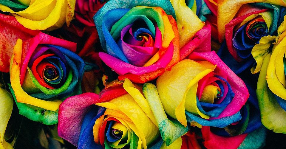 rose%20couleur_edited.jpg