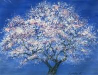 桜(白方さん)