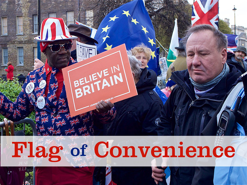 Flag of Convenience David Dunnico Brexit demonstration outside Parliament