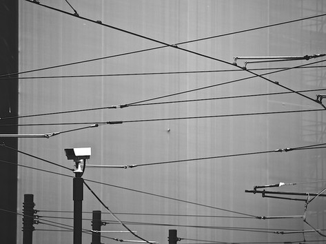 Wired For Vision