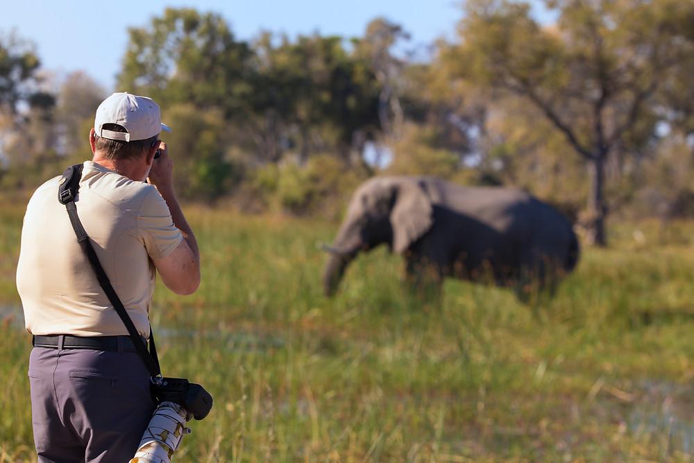 Photographer and an elephant in the Okavango, Botswana