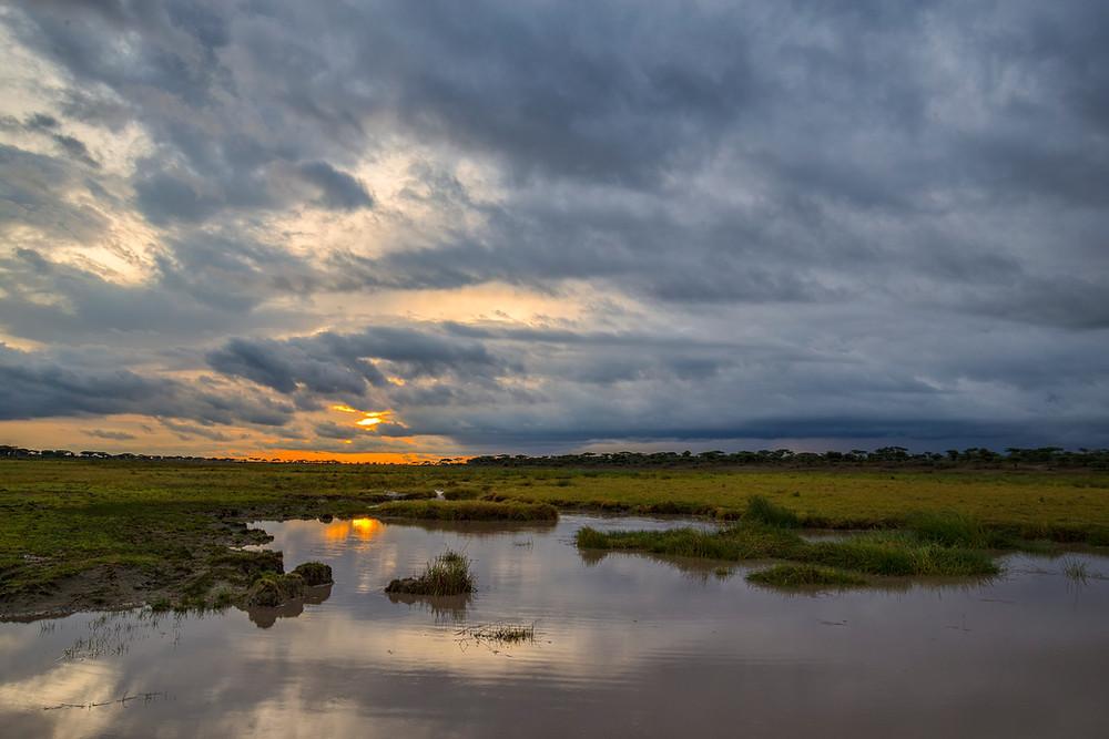 Sunset in the Big Marsh in Ndutu