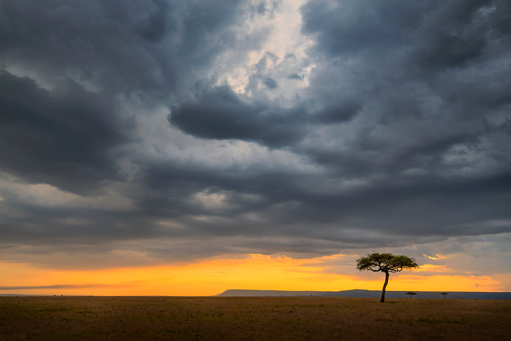 Dramatic sunset in Masai Mara, Kenya