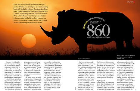 Image of a rhino at sunrise