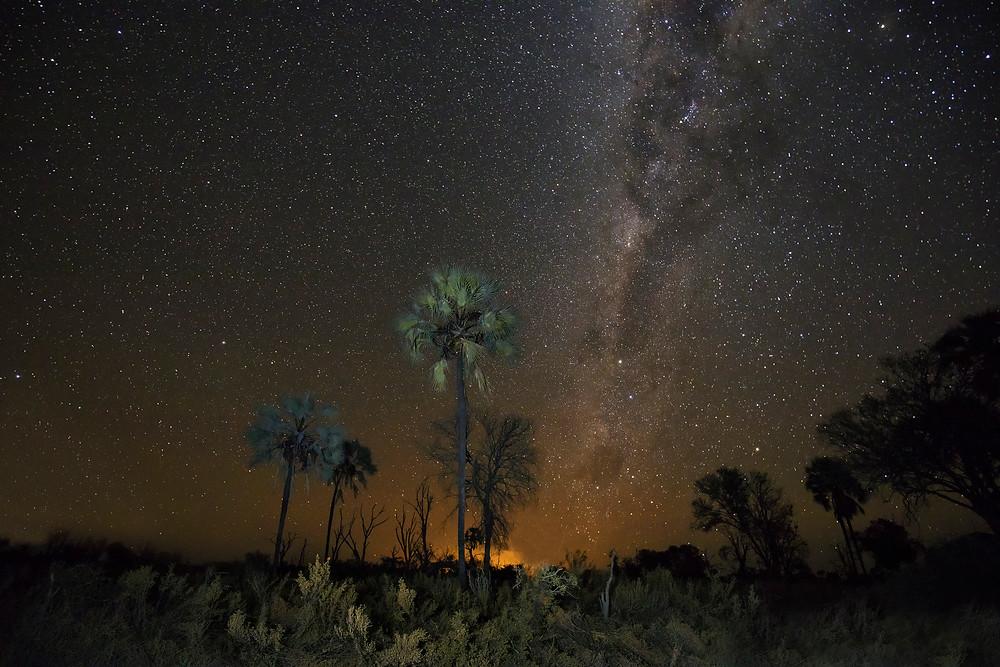 Night landscape in the Okavango, Botswana