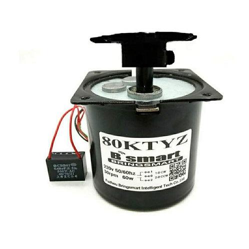 AC220V 30 rpm/min 60W 80Ktyz CW, CCW motor with gear (copper winding)