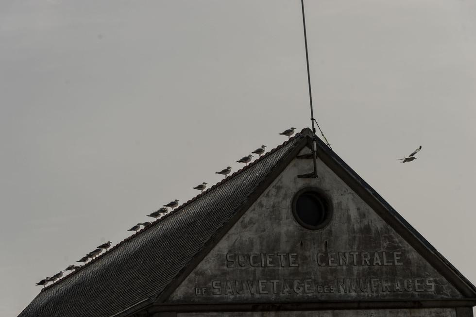 Bretagne004.jpg