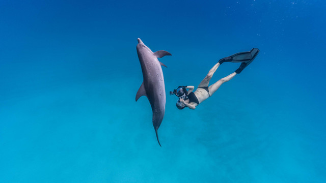 Isabelle Dupre and dolphin