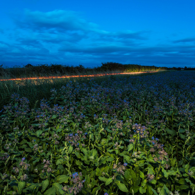 Colchester - Five Lakes