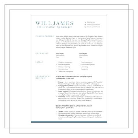 Resume Example C