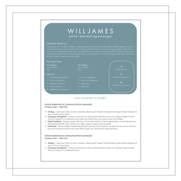Resume Example D