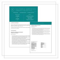 Resume Example K