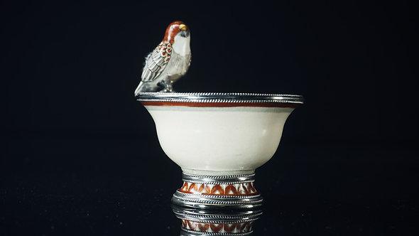 Fuente pájaro canela