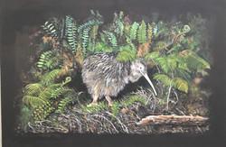 Kiwi Among Ferns Acrylic On Canvas