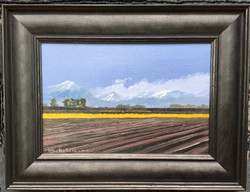 Winter, Late Afternoon Mt Somers Oil Framed