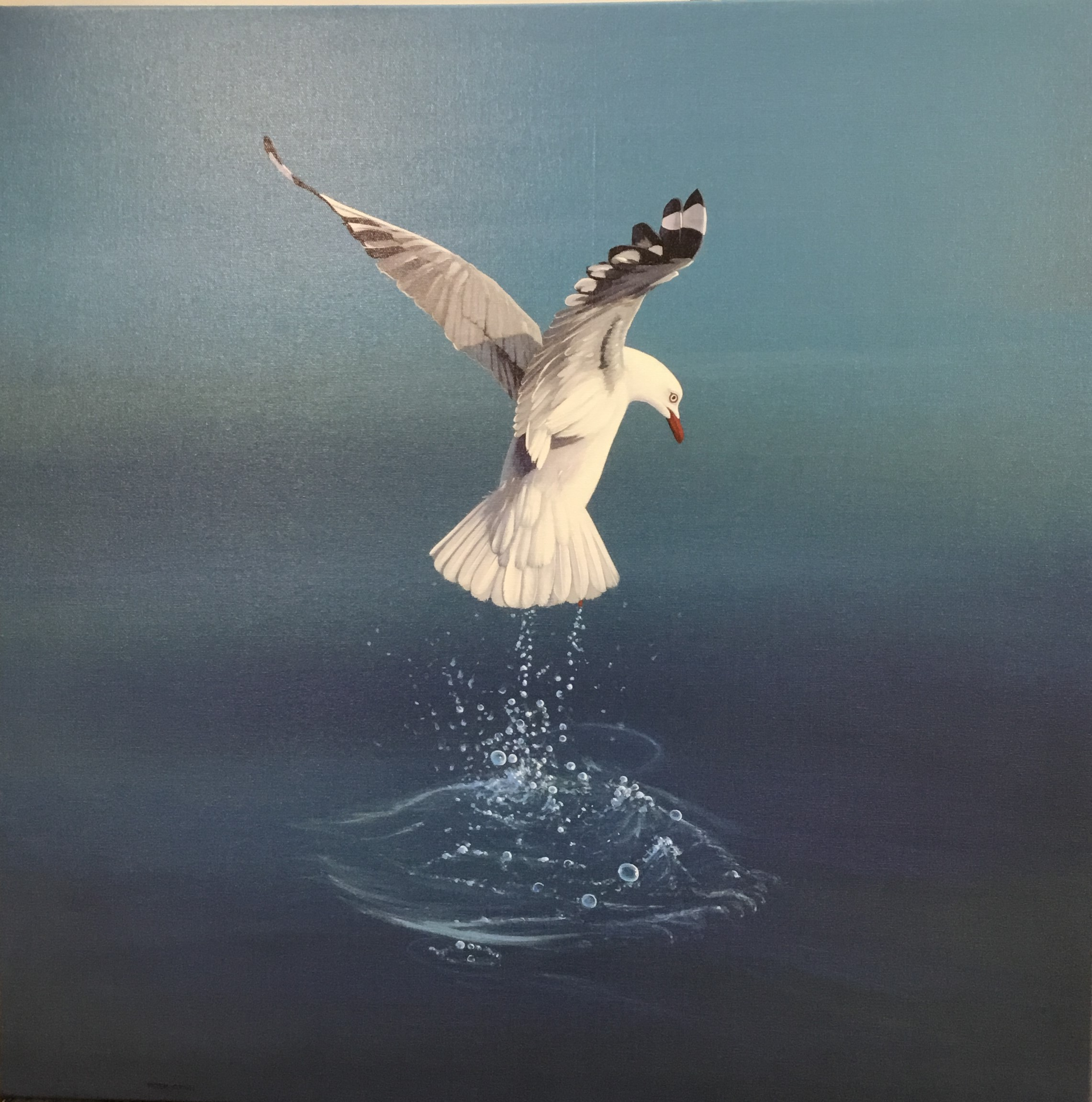 On The Wing Of A Seagull PRINT On Canvas