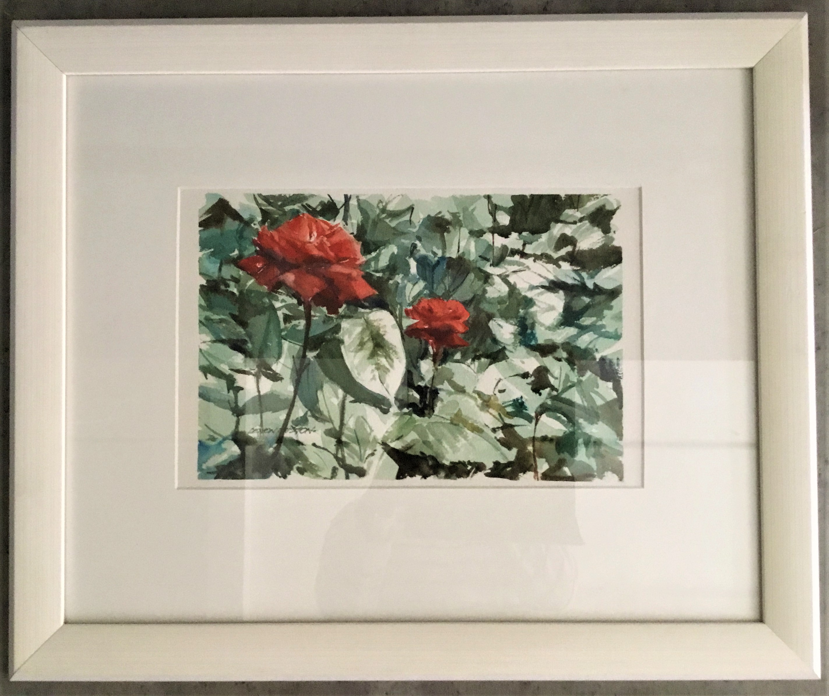 Rose Beauty Water Colour Framed